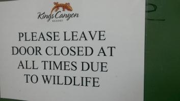 Bush Camp (no 'resort'), Kings Canyon/Wattarka, NT, Australia, January 2015