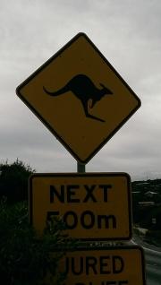 Great Ocean Road, Victoria, Australia, January 2015