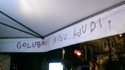 "Translates as ""Pigeons aren't humans"". Belgrade, April 2015"