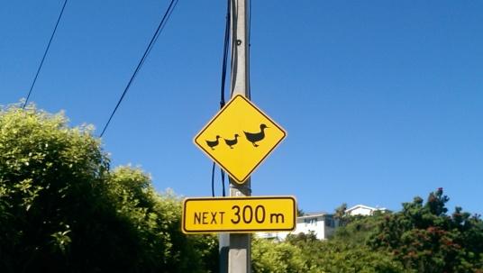Wellington, New Zealand, February 2015